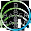 bayr-logo